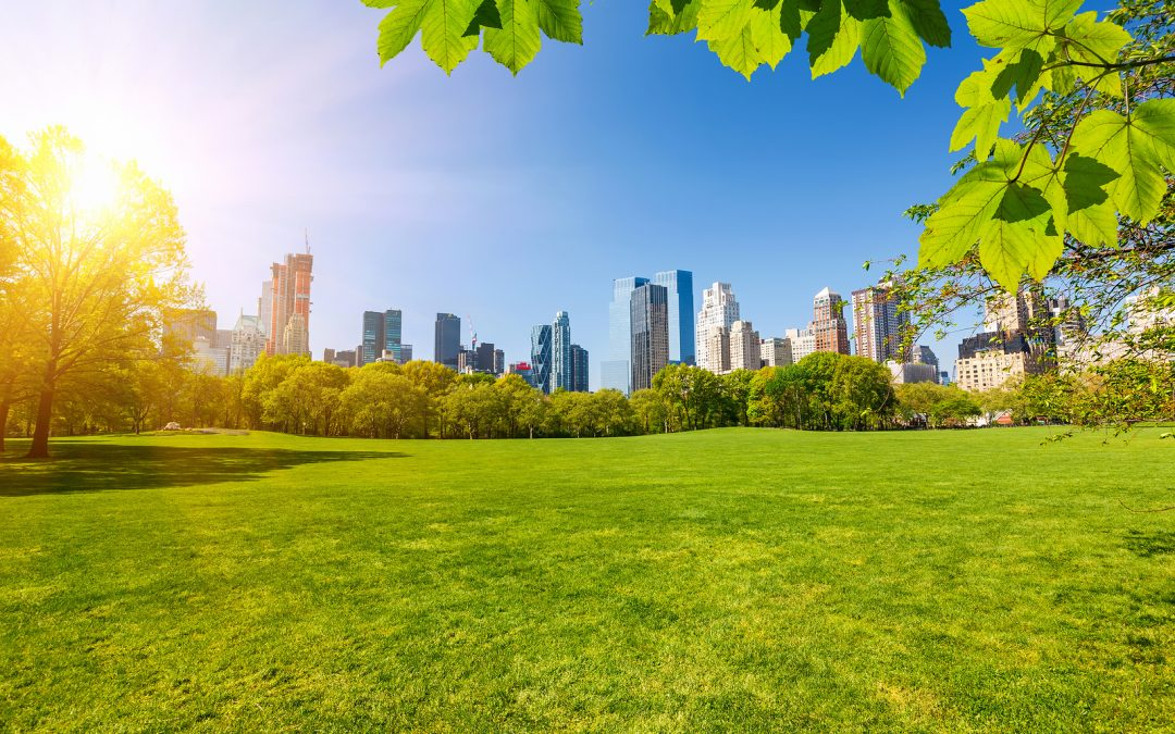 bigstock-Central-park-at-sunny-day-New-85898525-1080x675