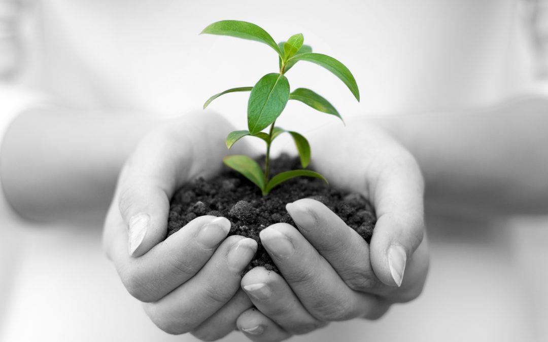 entrepreneurship-giving-back-1080x675